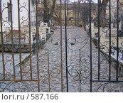 Кованые ворота. Стоковое фото, фотограф Вадим / Фотобанк Лори