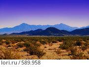 Купить «Долина Смерти», фото № 589958, снято 23 мая 2018 г. (c) Estet / Фотобанк Лори