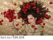 Купить «Девушка в лепестках роз», фото № 590434, снято 29 августа 2008 г. (c) Михаил Малышев / Фотобанк Лори