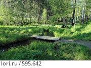 Купить «Мосток и ручей», фото № 595642, снято 17 июня 2007 г. (c) Ivan I. Karpovich / Фотобанк Лори