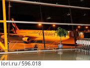 Купить «Самолет авиакомпании Эмираты (Emirates) за окном аэропорта», фото № 596018, снято 29 ноября 2008 г. (c) Алексей Еманов / Фотобанк Лори