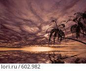 Купить «Красивый закат», иллюстрация № 602982 (c) Виктор Застольский / Фотобанк Лори