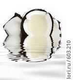 Купить «Свежий кокос в воде», иллюстрация № 603210 (c) Алина Анохина / Фотобанк Лори
