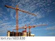 Купить «Новостройки - башенные краны на строительстве многоэтажного жилого дома», фото № 603830, снято 9 ноября 2008 г. (c) Олег Титов / Фотобанк Лори
