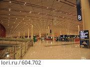 Купить «Столичный Международный аэропорт Пекина, PEK (Пекин)», фото № 604702, снято 29 ноября 2008 г. (c) Алексей Еманов / Фотобанк Лори