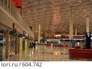 Купить «Столичный Международный аэропорт Пекина, PEK (Пекин)», фото № 604742, снято 29 ноября 2008 г. (c) Алексей Еманов / Фотобанк Лори