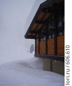 Купить «Под снегом», фото № 606610, снято 16 февраля 2008 г. (c) Анастасия Иванова / Фотобанк Лори