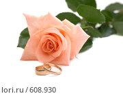 Купить «Роза и обручальные кольца», фото № 608930, снято 29 июня 2008 г. (c) Cветлана Гладкова / Фотобанк Лори