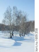 Зимний сибирский пейзаж. Стоковое фото, фотограф Александр Зайцев / Фотобанк Лори