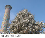 Купить «Узбекистан, Самарканд», фото № 611954, снято 8 января 2008 г. (c) Легкобыт Николай / Фотобанк Лори