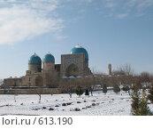 Купить «Узбекистан, Шахрисабз», фото № 613190, снято 11 января 2008 г. (c) Легкобыт Николай / Фотобанк Лори