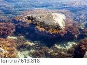 Купить «Морской пейзаж. Камни в море у берега», фото № 613818, снято 12 октября 2008 г. (c) Алексей Бок / Фотобанк Лори