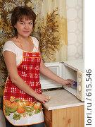 Купить «Девушка у микроволновой печи», эксклюзивное фото № 615546, снято 14 декабря 2008 г. (c) Мария Зубарева / Фотобанк Лори