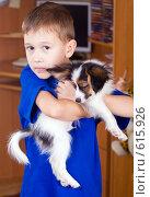 Купить «Щенок папийона на руках у мальчика», фото № 615926, снято 29 октября 2008 г. (c) Сергей Лаврентьев / Фотобанк Лори
