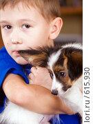 Купить «Щенок папийона на руках у мальчика», фото № 615930, снято 29 октября 2008 г. (c) Сергей Лаврентьев / Фотобанк Лори