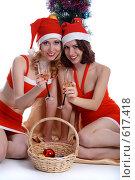 Купить «Встреча Нового Года», фото № 617418, снято 2 декабря 2008 г. (c) Serg Zastavkin / Фотобанк Лори