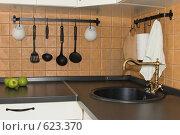Купить «Интерьер кухни», фото № 623370, снято 12 июля 2008 г. (c) Бутенко Андрей / Фотобанк Лори