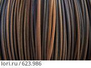 Купить «Металлическая проволока», фото № 623986, снято 21 октября 2008 г. (c) Синюков Пётр Львович / Фотобанк Лори