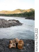 Грибы подберёзовики на фоне горной реки Катунь. Стоковое фото, фотограф Сергей Негробов / Фотобанк Лори