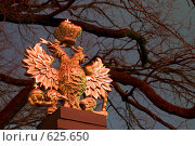 Купить «Санкт-Петербург. Двуглавый орел на ограде Домика Петра Первого», эксклюзивное фото № 625650, снято 14 декабря 2008 г. (c) Румянцева Наталия / Фотобанк Лори