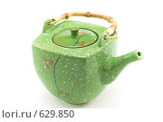 Купить «Чайник», фото № 629850, снято 28 ноября 2008 г. (c) Руслан Кудрин / Фотобанк Лори