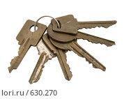 Купить «Связка из шести ключей на белом фоне», фото № 630270, снято 14 марта 2008 г. (c) Гребенников Виталий / Фотобанк Лори