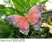 Купить «Бабочка», эксклюзивное фото № 633470, снято 26 мая 2008 г. (c) lana1501 / Фотобанк Лори