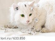 Купить «Белый кот с гирляндой», фото № 633850, снято 25 декабря 2008 г. (c) Алексей Крылов / Фотобанк Лори