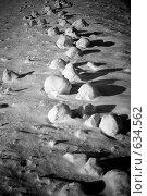 Купить «Снежные камни», фото № 634562, снято 28 декабря 2008 г. (c) Андрей Доронченко / Фотобанк Лори