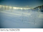 Купить «Зимний пейзаж», фото № 634570, снято 28 декабря 2008 г. (c) Андрей Доронченко / Фотобанк Лори