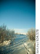 Купить «Тропинка в зимнем лесу», фото № 634578, снято 28 декабря 2008 г. (c) Андрей Доронченко / Фотобанк Лори