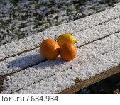 Купить «Апельсины и лимон на заснеженном столе», фото № 634934, снято 22 мая 2019 г. (c) Анна Полторацкая / Фотобанк Лори