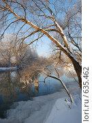 Купить «Коряга во льду», фото № 635462, снято 27 декабря 2008 г. (c) Петров Алексей / Фотобанк Лори