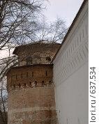 Купить «Новый Иерусалим, Иноплеменничья башня и стена монастырской ограды», фото № 637534, снято 24 февраля 2008 г. (c) Валерий Лисейкин / Фотобанк Лори