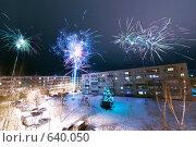 Купить «Празднование Нового года в Подмосковье. Новогодний салют», фото № 640050, снято 1 января 2009 г. (c) Евгений Захаров / Фотобанк Лори