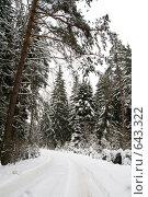 Купить «Зимняя дорога», фото № 643322, снято 2 января 2009 г. (c) Медведева Мила / Фотобанк Лори