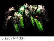 Купить «Салют», фото № 644334, снято 12 августа 2008 г. (c) Ерин Илья / Фотобанк Лори