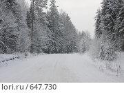 Купить «Зимняя дорога», эксклюзивное фото № 647730, снято 4 января 2009 г. (c) Наталия Шевченко / Фотобанк Лори