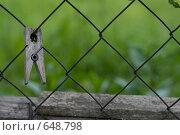 Купить «Прищепка, прикрепленная к сетке», фото № 648798, снято 21 июня 2008 г. (c) Медведева Мила / Фотобанк Лори