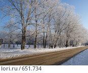 Купить «Тополиная аллея зимой», фото № 651734, снято 11 января 2009 г. (c) Александр Шилин / Фотобанк Лори