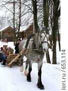 Купить «Проводы зимы. Катание на лошадях», фото № 653114, снято 9 марта 2008 г. (c) ElenArt / Фотобанк Лори