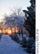 Купить «Зимний вечер в парке», фото № 655314, снято 21 декабря 2008 г. (c) Ivan I. Karpovich / Фотобанк Лори