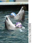 Дельфины с мячом (2008 год). Редакционное фото, фотограф Дмитрий С. / Фотобанк Лори