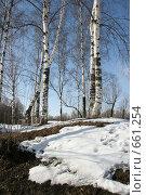Купить «Весна света. Конец зимы, начало весны.», фото № 661254, снято 26 марта 2006 г. (c) Александр Цымбалов / Фотобанк Лори