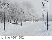 Купить «Площадь», фото № 661302, снято 15 января 2009 г. (c) Кирилл Федорин / Фотобанк Лори