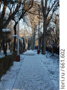 Купить «Парк», фото № 661602, снято 21 декабря 2008 г. (c) Кирилл Федорин / Фотобанк Лори