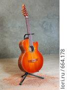Купить «Гитара девятиструнная», фото № 664178, снято 10 мая 2008 г. (c) Аlexander Reshetnik / Фотобанк Лори