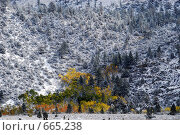 Купить «Склоны гор, Америка», фото № 665238, снято 11 октября 2008 г. (c) Estet / Фотобанк Лори