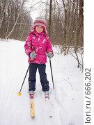 Купить «Маленькая девочка катается на лыжах», фото № 666202, снято 18 января 2009 г. (c) Ольга Полякова / Фотобанк Лори