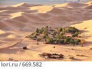 Купить «Жилье кочевников (берберов) в пустыне Сахара», фото № 669582, снято 22 декабря 2008 г. (c) Владимир Мельник / Фотобанк Лори